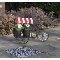 Bike Cart Plant Pot