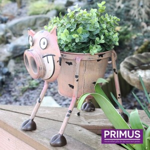 Nodding Pig Planter